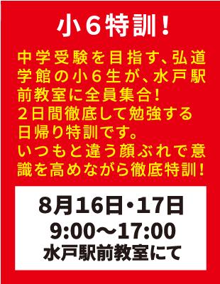 弘道学館夏期講習小6特訓!